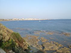 Panorama next to Il Cardellino restorante, Lounge Bar in Castiglioncello beach