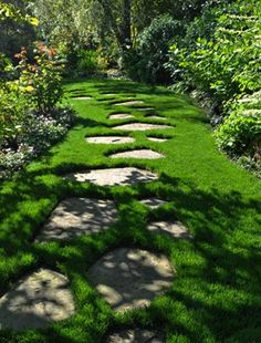 paver garden pathway - love how they're just set in the grass!