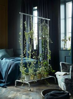 IKEA Plant Hack room divider using a clothing stand. Genius idea for a studio apartment. garden indoor small spaces living rooms IKEA Plant Hacks Your Green Friends Will Love Bedroom Plants Decor, Decor Room, Plant Rooms, Garden Bedroom, Small Rooms, Small Spaces, Ikea Plants, Plants On Walls, Home Decor