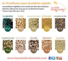 Le top 10 des protéines végétales !