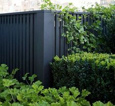 6 Simple and Modern Ideas: Modern Rail Fence Quilt Pattern Garden Fence Design Ideas.Garden Fence Tractor Supply Modern Fence For Sale. Fence Around Pool, Pool Fence, Backyard Fences, Nice Backyard, Yard Fencing, Diy Privacy Fence, Privacy Fence Designs, Diy Fence, Pallet Fence