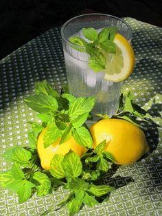 mint lemonade.  I even have the mint plant!! :)