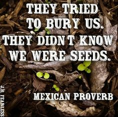 Grow, fight, courage, perservere, Mexican proverb, wisdom, quotes, inspiration