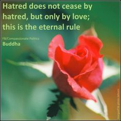"""Hatred does not cease by hatred, but only by love; this is the eternal rule."" ~Buddha www.Facebook.com/CompassionatePolitics"