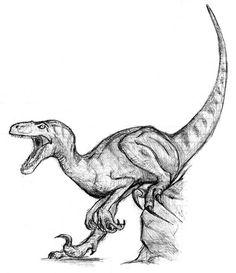 Raptor - or Deinonychus by BullyKilla on DeviantArt