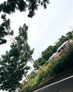 #Tangerang #Indonesia #Scenery