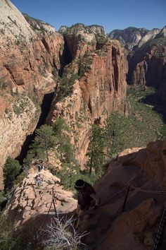 Rated one of the best day hikes in America -  Angels Landing, UT