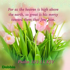 For as the heaven is high above the earth, so great is his mercy toward them that fear him. Psalm 103:11