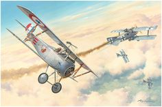 First American Ace by Roy Grinnell  In May, 1916, Raoul Gervais Lufbery was assigned to N-124, the Escadrille Americaine (the American Pilot...