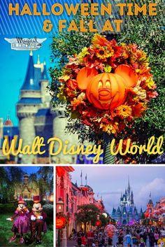 Halloween Time & Fall at Walt Disney World - The Blogorail