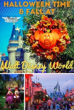 Halloween Time & Fall at Walt Disney World - The Blogorail
