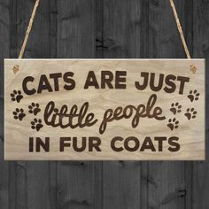 Red Ocean Cats Are Just Little People In Fur Coats Plaque Wooden Hanging Sign Cat Lover Kitty Lovers Paw Print Gift Wooden Plaques, Wooden Signs, Crazy Cat Lady, Crazy Cats, Cat Lover Gifts, Cat Lovers, Retirement Survival Kit, American Retro, Cat Signs