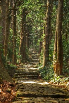 Kumano Kodo Trail, Ancient Pilgrimage Routes, Wakayama, Japan 熊野古道