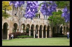 The beautiful St. Lucia campus of University of Queensland in Brisbane, Australia - one of our study abroad exchange program destinations