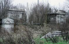Mount Moriah Cemetery - Today much of the cemetery is completely abandoned. The overgrown plants, toppled headstones, and crumbling mausoleums make it something right out of a Tim Burton movie.