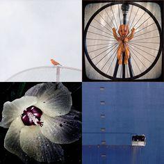 Mais uma edição do nosso 4/4/4 , que nos apresenta mais 4 selecionados para a grande final que escolherá as imagens que serão exibidas no MIS em junho, durante nosso FLAMob-Festival e Prêmio Latino…