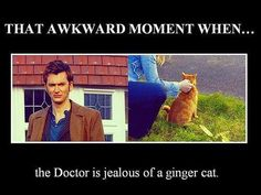 And he's still not ginger! =D They should have a ginger Doctor. I want them to bring back David Tennant. They should give him a wig exactly like his own hair. Or just dye it for the show. 10th Doctor, Don't Blink, Awkward Moments, David Tennant, Dr Who, Superwholock, Tardis, Mad Men, Hunger Games