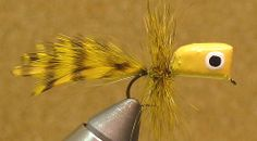 » Balsa Popper Pattern - Fly Fishing & Fly Tying Information Resource
