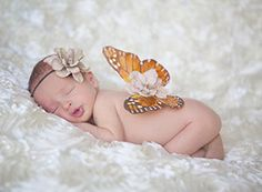 Elegant Whimsical Newborn Monarch Butterfly Wings and by BellaBina, $25.00