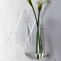 Hanging tear drop vases.  They have a couple different shaped ones. They looks super cool