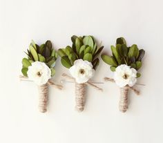 con le foglie d'ulivo!!!  Rustic wedding boutonniere, Groomsmen boutonniere, Boxwood natural boutonniere, wedding keepsake, buttonhole - HEDGEROW