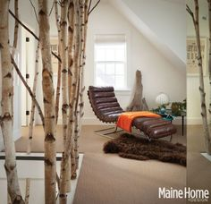 Trees for railing. Neat Maine home.