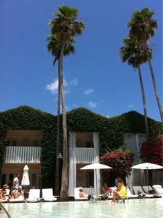 #iconic #pool #Delano Hotel #Miami FL