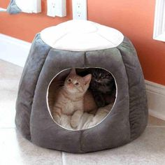 Wholesale Warm Cat House Pet Supplies In Winter Four Seasons Cat Sleeping Bag Deep Sleep Semi-closed Cat Tent Cat House from Our website with high quality and fast shipping worldwide. Pet Dogs, Dogs And Puppies, Pets, Puppy Litter, Cheap Cat Beds, Gatos Cat, Cat Kennel, Winter Cat, Cat Supplies