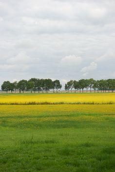 © Lideke Detmers | Landscape Midwolda, Groningen, The Netherlands | 2013