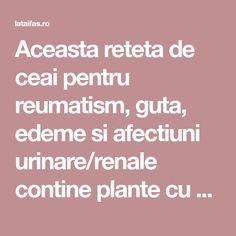 Aceasta reteta de ceai pentru reumatism, guta, edeme si afectiuni urinare/renale contine plante cu proprietati, antiinflamatoare, analgezice, diuretice, sedative, Sardinia, Plant