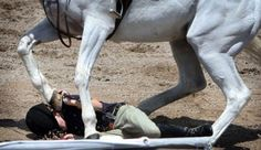 """In my last article, """"Dealing With Fear: Part One,"""" we learned that what frightens horses does not frighten humans and what frightens humans does not frighten horses. A horse's one and only fear that will cause him to react in a way that can cause serious injury to himself and to us is the"""