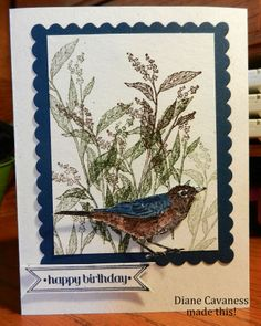 Stampin' Up Nature Walk, Itty Bitty Banners, Square Framelits