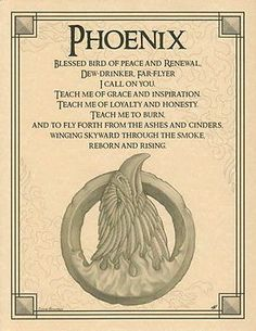 PHOENIX POSTER A4 SIZE Wicca Pagan Witch Witch Goth BOOK OF SHADOWS