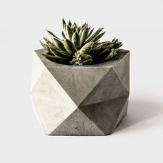 This geometric planter centerpiece by TheArmoryCo via etsy is the perfect size for your guest's tables; your guests won't have to play hide and seek behind a huge bouquet of flowers. #cactus #centerpiece