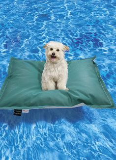 Puppy Pool Floats from Frontgate.