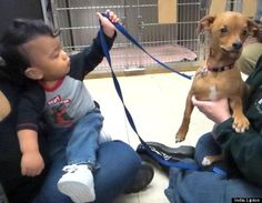 Tiny Dog is a Big Hero to Kids with Brain Condition