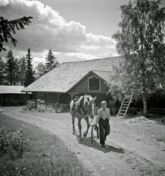 These black and white photographs were taken in Finland, ca. 1941 by Barbara Wright , who also worked for the Farm Security Administration ....