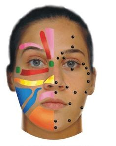 Facial and Ear maps designed to help clients gain a better understanding of Reflexology. Facial Massage, Spa Massage, Beauty Room, Diy Beauty, Tens Unit Placement, Face Exercises, Face Yoga, Beauty Recipe, Health