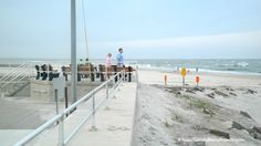 Best Place for Dolphin Watching in Wildwood is a special spot up in North Wildwood near the Hereford Inlet Lighthouse