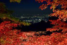 大山寺石段上からの夜景 Night View from Oyamadera Temple / 大山寺&大山阿夫利神社の紅葉 Autumn leaves in Oyamadera Temple and Afuri-jinja Shrine,Kanagawa,Japan