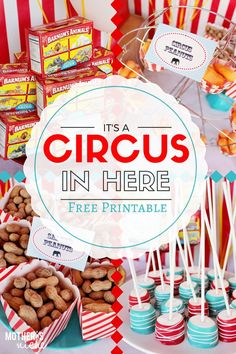 Circus Party: The Best Games, Food, and Decor for your Big Top Bash! PLUS free…
