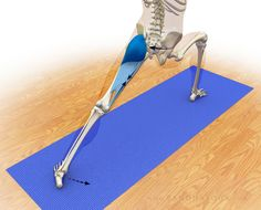 The Daily Bandha: Refining the Pelvis in Warrior I