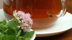 Pripravte si zázračný oreganový olej. Nordic Interior, Healing Herbs, Health Advice, Omega 3, Home Remedies, Kimchi, Detox, Alcoholic Drinks, Health And Beauty