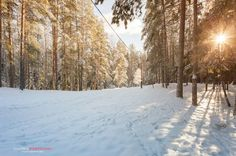 Зимний пейзаж на окраине города Дубна.Россия.(4)