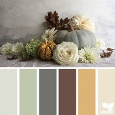 today's inspiration image for { color thanks } is by @c_coll ... thank you, Cristina, for another gorgeous #SeedsColor image share!