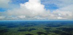 Mistério resolvido: estudo descobre por que chove tanto na Amazônia  http://controversia.com.br/1959