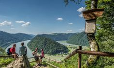 The Donausteig leads you through a fabulous landscape along the Danube from Passau via Línz to Grein. Explore the varied region along the Danube. Places Ive Been, Places To Go, Heart Of Europe, Hiking Trails, Life Is Beautiful, Traveling By Yourself, Around The Worlds, Ocean, Explore