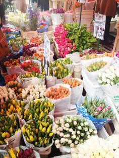 Columbia Road Flower Market, EC2 near Old St Tube. Heaven.