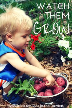 Kids in the Garden, a collection of resources for parents and teachers for teaching kids how to garden and grow their own food as a family.