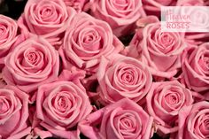 Heaven - Pink Roses All year round availability